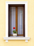 Blooming Red Geranium on Beautiful White Wooden Windowsill Reproduction photographique