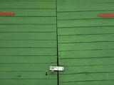 Green Doors Photographic Print