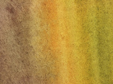 Close-up of Brown and Yellow and Green Streaks of Paint Canvas Photographic Print