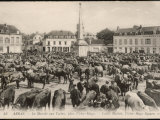 The Cattle Market in the Place Victor Hugo Arras Northern France Photographic Print