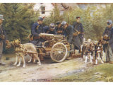 During World War One the Belgians Harness Their Dogs to Machine Guns Instead of Milk Carts Photographic Print