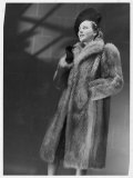 Three-Quarter Length Silver Fox Fur Coat with Roll Collar and Deep Side Pockets Photographic Print