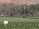 Golf Ball on Tee Photographic Print by Roger Holden