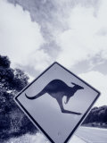 Kangaroo Crossing Sign, Australia Photographic Print by Walter Bibikow