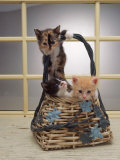 Kittens in Basket Photographic Print by Leslie Harris
