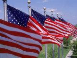 US Flags at Louisiana Mem Plaza, Baton Rouge Fotografie-Druck von Jim Schwabel