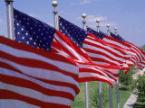 US Flags at Louisiana Mem Plaza, Baton Rouge Photographic Print by Jim Schwabel