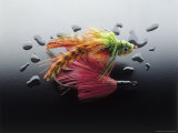 Colorful Fly-Fishing Lures Photographic Print by Rick Kooker