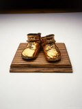 Bronze Baby Shoes on Plaque Photographic Print by Howard Sokol