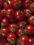 Cherry Tomatoes Photographic Print by Mark Gibson