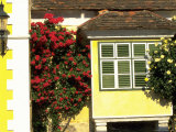 Flowers Near Colorful Home, Burgenland, Austria Photographic Print by Walter Bibikow