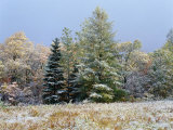 Early Snow Along Rte 73, Adirondack Mountains, NY Photographic Print by Jim Schwabel