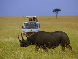 Rhinoceros, Masai Mara, Kenya, Africa Photographic Print by Eric Horan