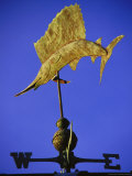 Sailfish Weathervane, AL Photographic Print by Jeff Greenberg