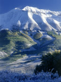 Snow, Trees and Mountains Photographic Print by William Swartz