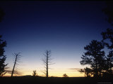 Bryce Canyon, Sunrise, Utah Photographic Print by Timothy O'Keefe