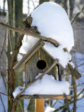 Snow Covering a Birdhouse Photographic Print by Dennis Macdonald