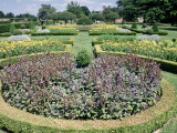 Westbury Court Garden, England Photographic Print by Lauree Feldman