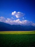 Field & Karwendel Mts, Aldrans, Tyrol, Austria Photographic Print by Walter Bibikow