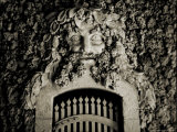A Gate with a Face Made from Coral Photographic Print by John Glembin