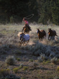 Cowboys Rounding Up Horses Photographic Print by Inga Spence