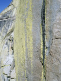 Rock Climber, the Needles, CA Photographic Print by Greg Epperson