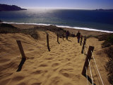 Steep Path Down to Baker Beach Photographic Print by Jeff Greenberg