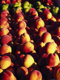 Peaches and Pears, Grand Haven, MI Photographic Print by Barry Winiker