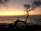 Big Island of Hawaii - Sunset from Beach Fotografie-Druck von Keith Levit