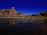 Lake Powell, Glen Canyon Nra, AZ Photographic Print by D. Robert Franz