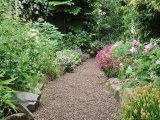 Gravel Path, View to Border Dactylorhiza, Dianthus, Lamium Rosa, Geranium, Digitalis Tasmania Photographie par Christopher Fairweather