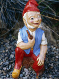 Gnome at Garden Paradise, Newhaven, Sussex Photographic Print by Brian Carter
