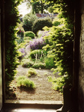 View Through Doorway Framed with Taxus to Country Flower Garden, Northumberland Photographie par Jacqui Hurst