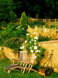 Informal Organic Garden Planted with Mixed Herbaceous Bulbs & Roses