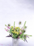 Herb &amp; Wildflower Arrangement, Fennel, Sage, Nigella &amp; Galega Styled by Lynn Keddie Fotografie-Druck von Lynn Keddie