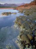 Corsican Coastline, Corsica, France Fotografiskt tryck av Olaf Broders