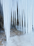 Ice Abstract, Slovenia Photographic Print by David Clapp