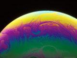 Soap Bubble Photographic Print by David M. Dennis