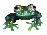 Glass Frog, Panama Photographic Print by David M. Dennis