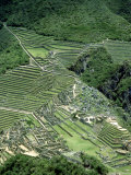 Machu Picchu Inca Ruins &amp; Terracing Viewed from Huayna Picchu, Peru Photographic Print by Paul Franklin