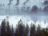 Lake at Dawn in the Mist, Kuusamo Area, Northeast Finland Photographic Print by Philippe Henry
