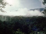 Mulu National Park, Borneo, Weather Time-Lapse, 8Am Photographic Print by Rodger Jackman