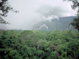 Mulu National Park, Borneo, Weather Time-Lapse, 4Pm Photographic Print by Rodger Jackman