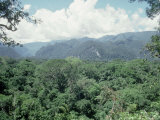 Mulu National Park, Borneo, Weather Time-Lapse, 11.45 AM Photographic Print by Rodger Jackman