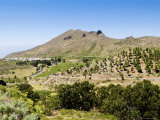 Santiago Del Teide, Tenerife, Location of the Last Volcanic Eruption on Tenerife in 1909 Fotografisk tryk af Martin Page