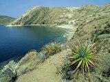 Isla Del Sol in Lake Titicaca, Bolivia Fotografisk tryk af Richard Packwood