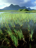 Ben Loyal from Lochan Hakel, Sutherland Photographic Print by Iain Sarjeant