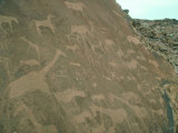 Bushmen Rock Engravings, Twyfelfontein, Namibia Photographic Print by Steve Turner