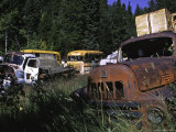 Car Cemetery, Colorado Photographic Print by Michael Brown