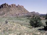Desert Landscape, USA Photographic Print by Michael Brown